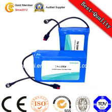 Li Polymer Battery Lithium-Ion Battery LiFePO4 Battery Pack