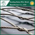 Malla de alambre de acero inoxidable y el mejor precio y la calidad enojado en China