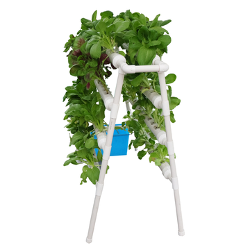 Skyplant Commercial Hydroponic Systems Plant Growing System