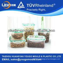 Fornecedor de molho de contentores de alimentos de parede fina 2013 e novo molde de caixa de ferramentas de injeção de plástico doméstico