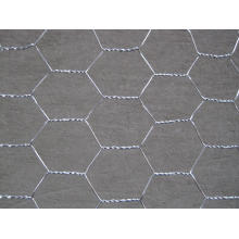 Chicken Poultry Wire Mesh Netting for Breeding