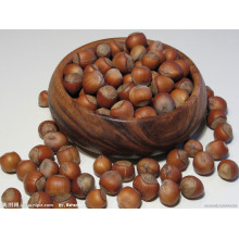Organic Raw Fresh Chestnut Chinese Bulk Chestnuts Price