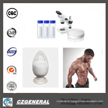 99% Puirty Steroids Powder Testosterone Undecanoate for Muscle Building