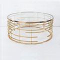 modern coffee table with stainless steel frame