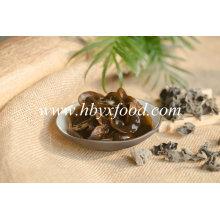 Champignon noir séché de légumes déshydratés du fournisseur chinois