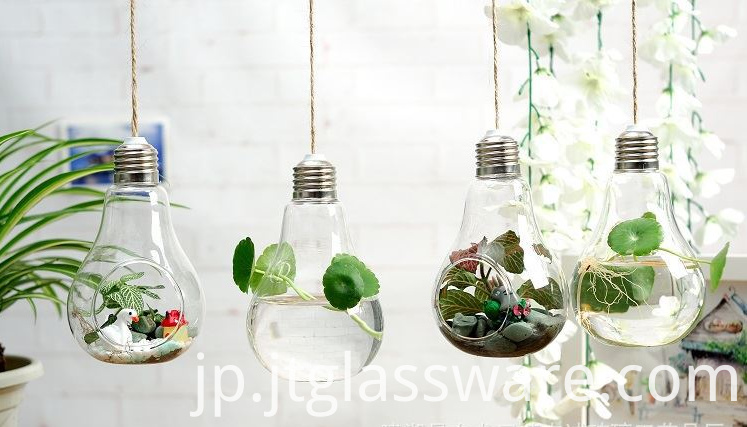 Hanging Clear Glass Vase