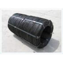 Black Iron Annealing Wire in Best Price