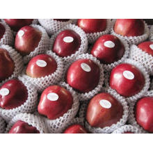 Huaniu Apple Corp/ Red Chinese Apple