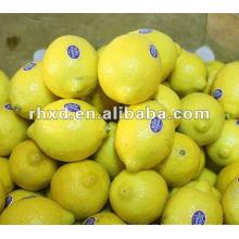 2012 limón chino fresco