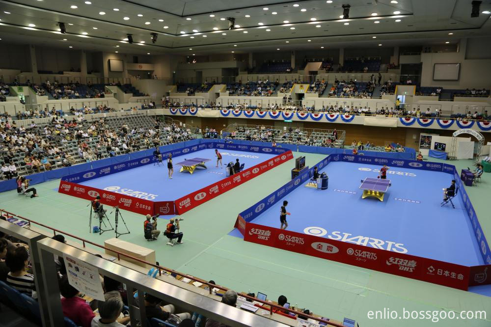 Blue Color For Table Tennis