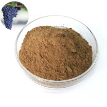 Manufactory Price Grape Extract Grape Juice powder Resveratrol Powder