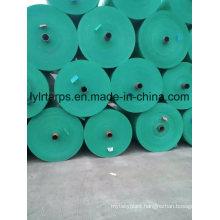 Green PE Tarpaulin Roll, PE Tarp Cover, Poly Tarp Sheet