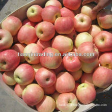China fruit fuji apple