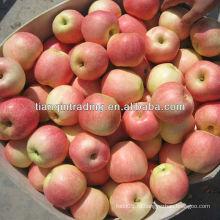 Китайское фруктовое яблоко fuji