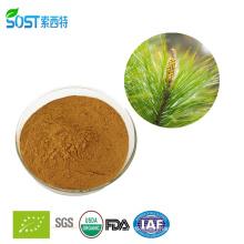 Free Sample Alibaba China pine needle powder