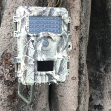 Boskon Guard Long-Range IR Trail Camera