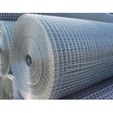 Electro Galvanized Welded Wire Mesh (HDW02)