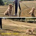 Conjunto de correa para perro doble