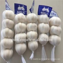2016 Jinxiang nueva cosecha de ajo fresco