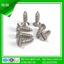 Widely Used Slotted Flat Head Self Tapping Screw