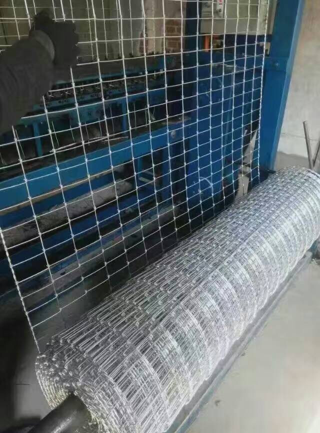 China Deer Fence Netting für Vieh-Hersteller