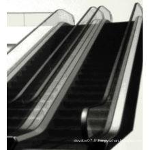 Escalier d'intérieur et extérieur automatique à économie d'énergie