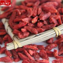 New wholesale red goji himalaya