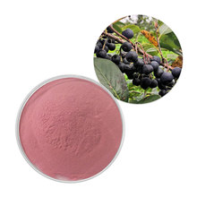 Factory Supply aronia chockberry fruit powder aronia powder