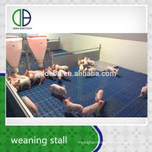 Hot Dip Galvanized Pipe Livestock Equipment Pig Weaner Crate