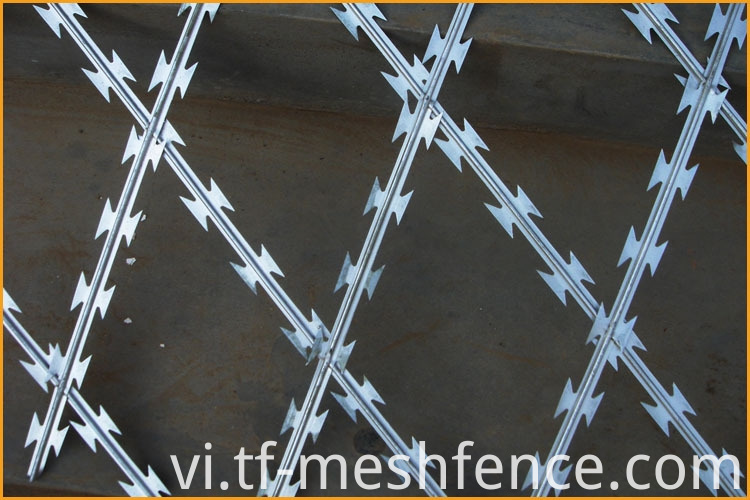 welded concertina razor wire mesh 3