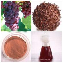 Materias primas aceite de semilla de uva de solventes orgánicos CAS: 85594-37-2