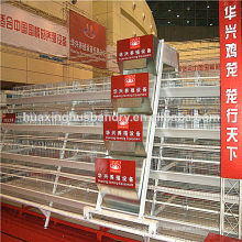 Soncap certificate chicken shed battery cage