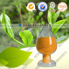 100% Natural EGCG Green Tea Extract 1% to 98%