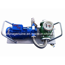 Электрический насос Zcheng Zcmtp-300L