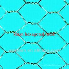 Hebei anping KAIAN triplo sextavado malha hexagonal