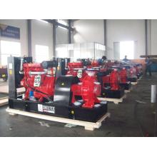 Hochdruck-Diesel-Pumpe Kirloskar