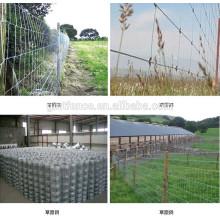 Clôtures de terrain de haute qualité à usage général