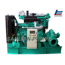 Centrifugal Double Suction Water Pump Made in China