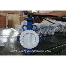 PTFE Lining Split Body Butterfly Valve