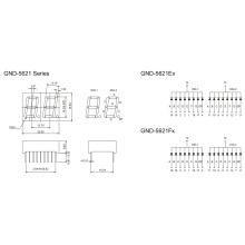 0.56inch 2 Digit 7 Segment Display (GNS-5621Ex-Fx)