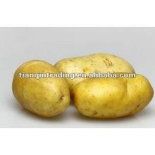 2012 chinês batata fresca preço