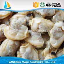 Carne congelada de moluscos curtos