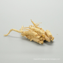 Natural herbal products cordyceps and ginseng for sale