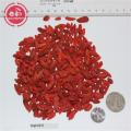 Sun dried goji berries with 18 amino acids
