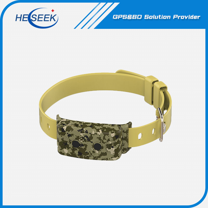 GPS Trackable on Dog Collar with Camera