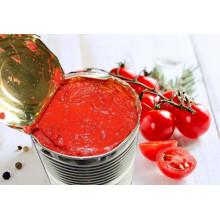 Organic Canned Food Tomato Paste