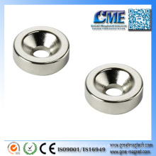 House Magnet Home Magnets Electromagnets and Permanent Magnets