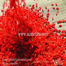 100% Qinghai Natural Goji Berries Organic