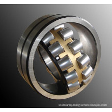 Self-Aligning Ball Bearing (2310 2RSK)