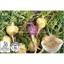High Quality Sexual Ingredients Maca Extract Macamide, Macaenes, Maca Extract Powder